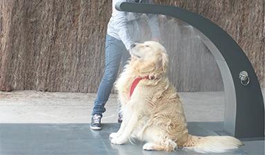 Ducha showy para perros